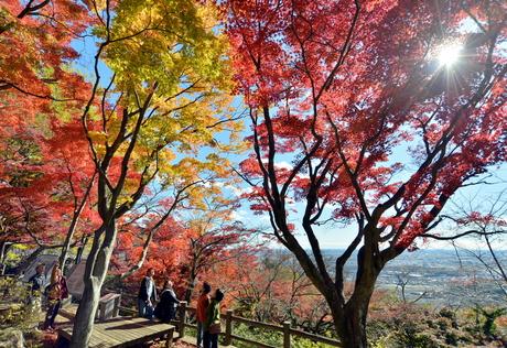 121127ohirasan-01.jpg太平山.jpg