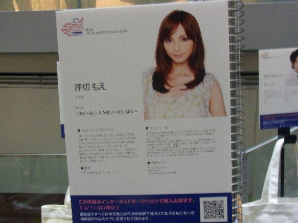RIMG1116-1blog.jpg
