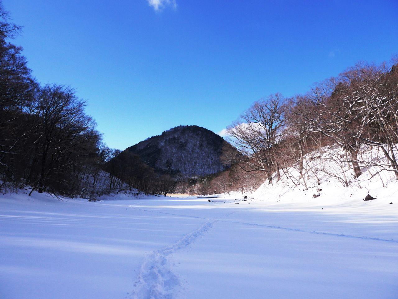b40a1461.jpg冬の大沼