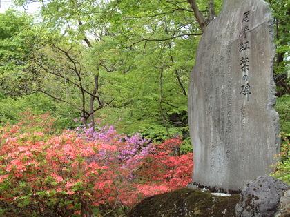 6a5ae02b-s.jpg尾崎紅葉の碑